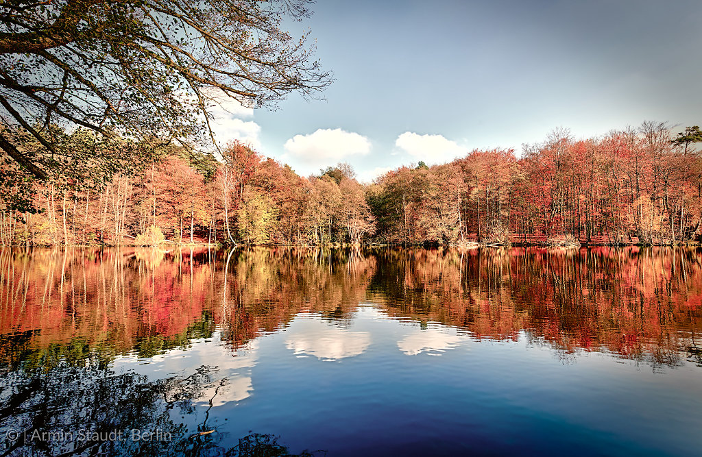panorama of autumn trees at a glassy lake