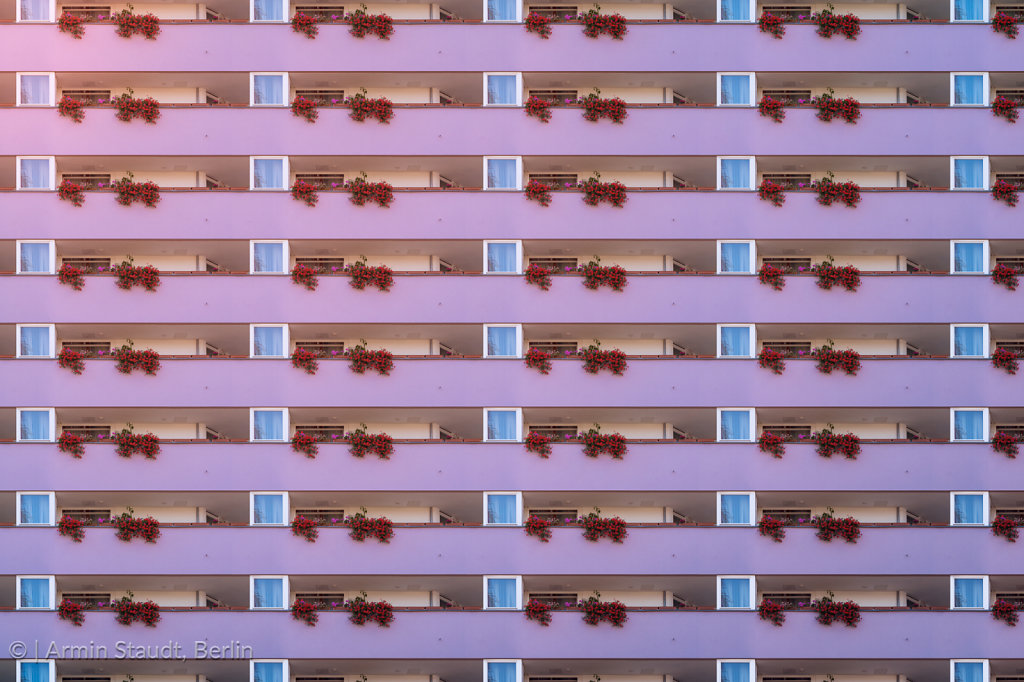 architectural pattern, purple balcony facade with geranium